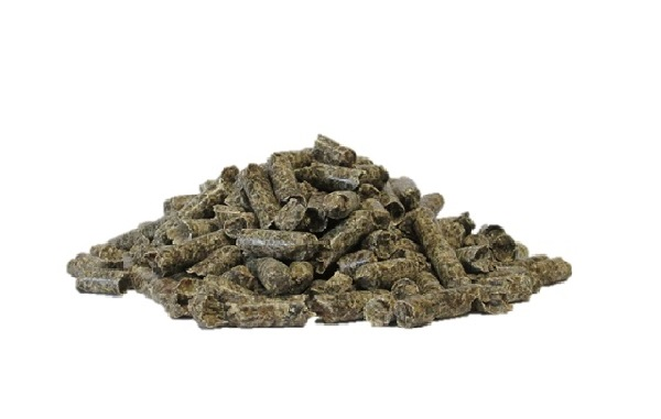 Polpe di barbabietola essiccate in pellet